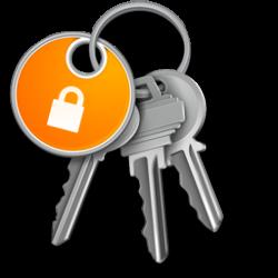 Apple Keychain Icon